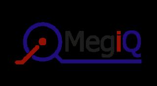 MegiQ(メジック)社はオランダにある、ベクトル・ネットワーク・アナライザとアンテナのラジエーション測定システム(RMS)を開発・製造しているメーカーです。